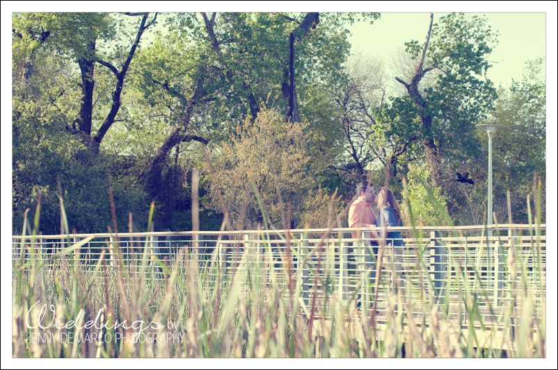 Mellissa_Landscape-05