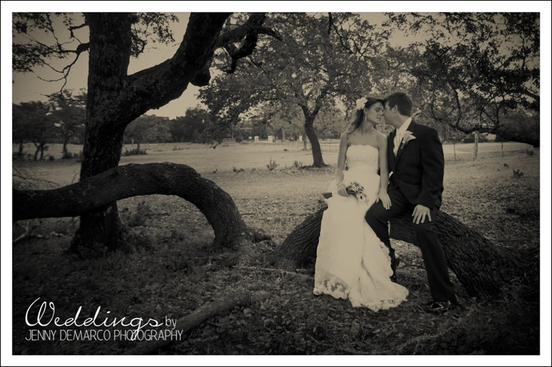 bride_grrom_treegrove