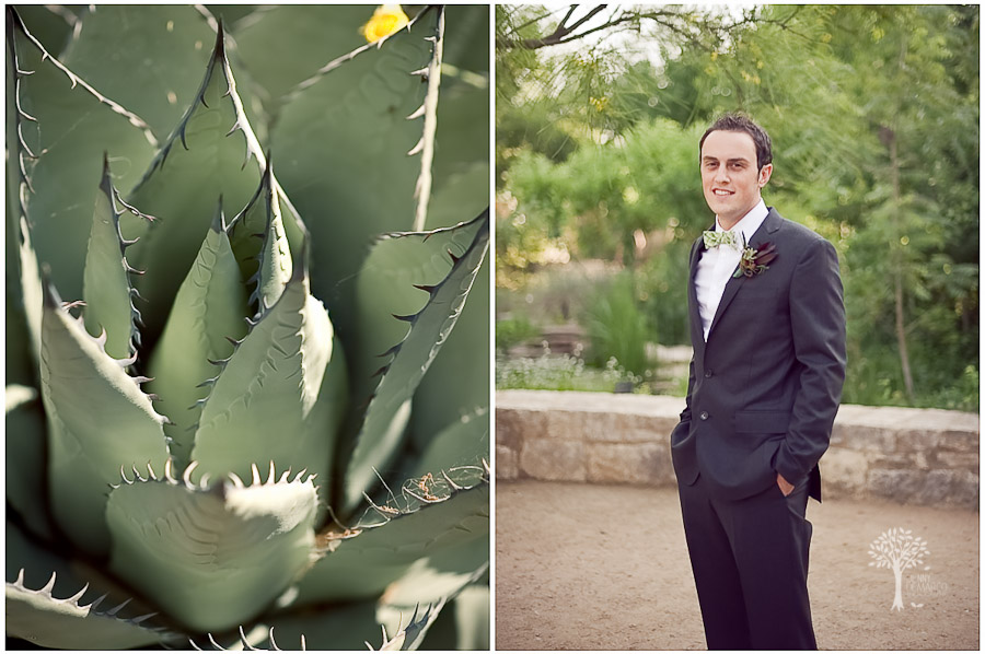 Wildflower Center, Austin Wedding Photographer, groom, cactus, green, bowtie, graphic,