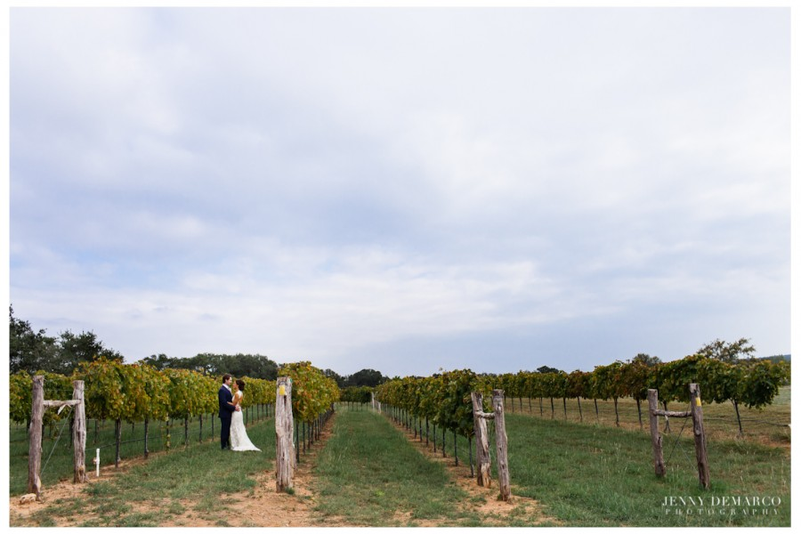 The bride and groom in the Texas hillcountry vineyard.