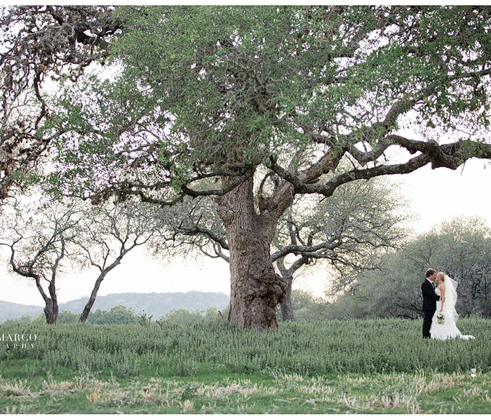 Fredericksburg Wedding : Melissa and Harlan