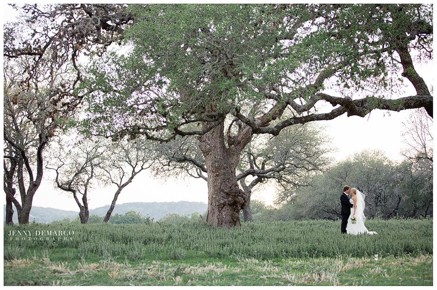 Fredericksburg Wedding : Melissa and Harlan