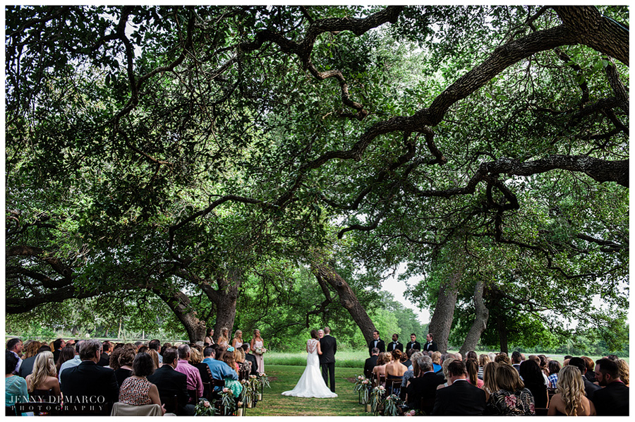 Shelby and Chad standing with their officiant during the ceremony at their distinctively elegant venue underneath some of Texas' grandest Live Oak trees.