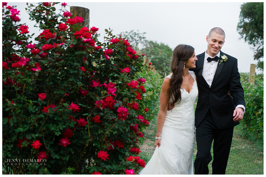 Shelby and Chad walking in the vineyard passing the romantic rose bush.