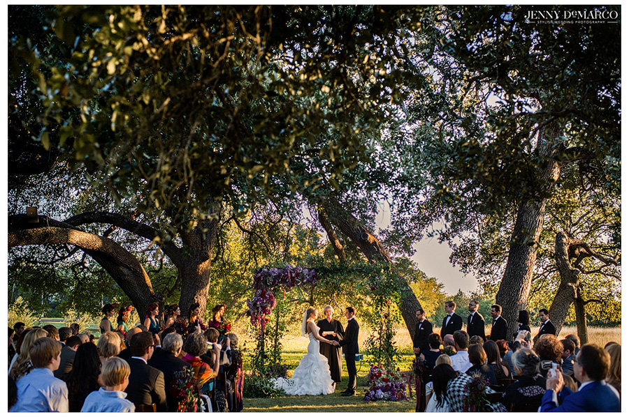 Wide shot of outdoor wedding under big oak trees in Texas Hill Country.