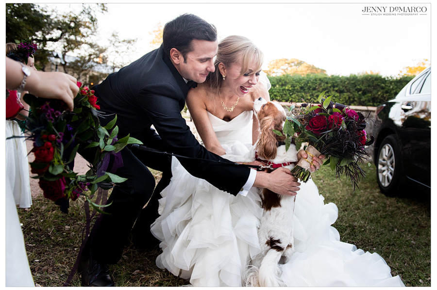 Bride and groom excitingly greet their puppy after having exchanged vows.