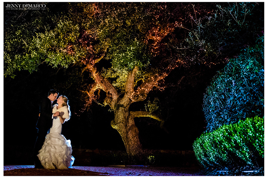 Bride and Groom in night time shot under oak tree.