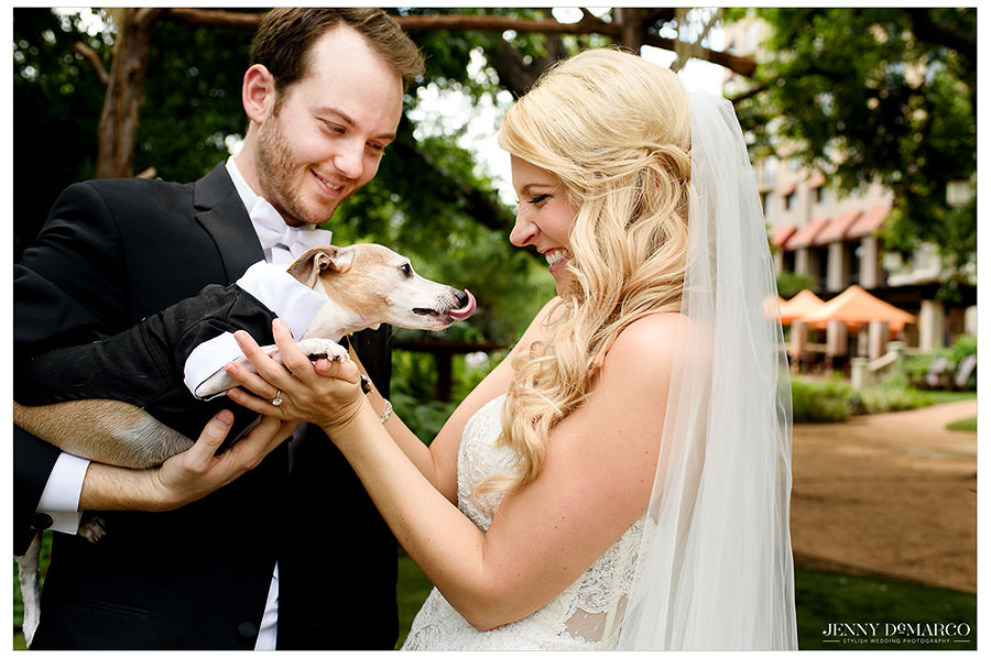 The bride and groom's dog joins the first look.