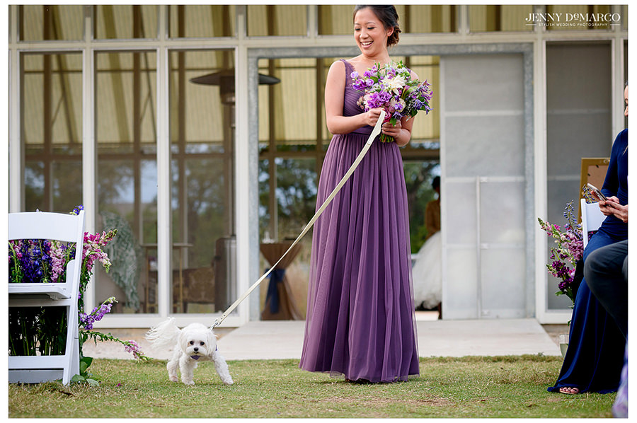 A bridesmaid walks a dog on a leash down the aisle for the ceremony.