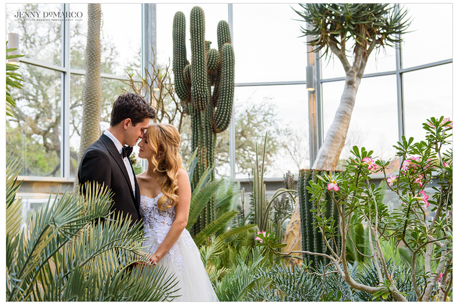 Bride and Groom sharing a moment in the greenhouse amidst the cacti
