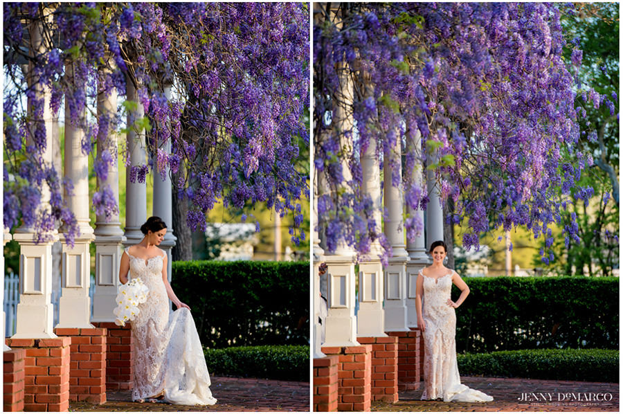 Bridal portrait at the Woodbine Mansion under the purple wisteria