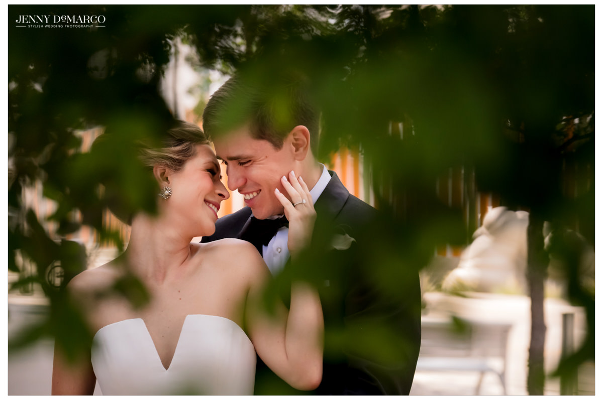 An intimate shot through the trees.