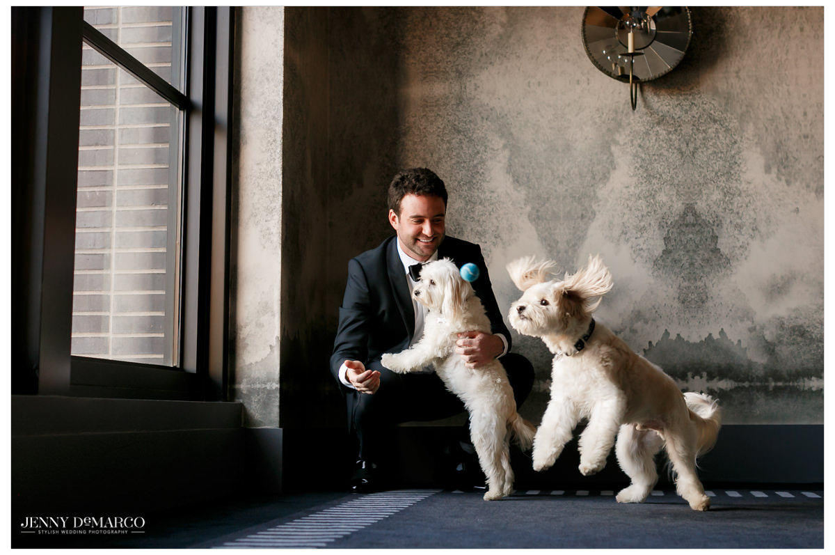 Grooms plays with their two dogs.