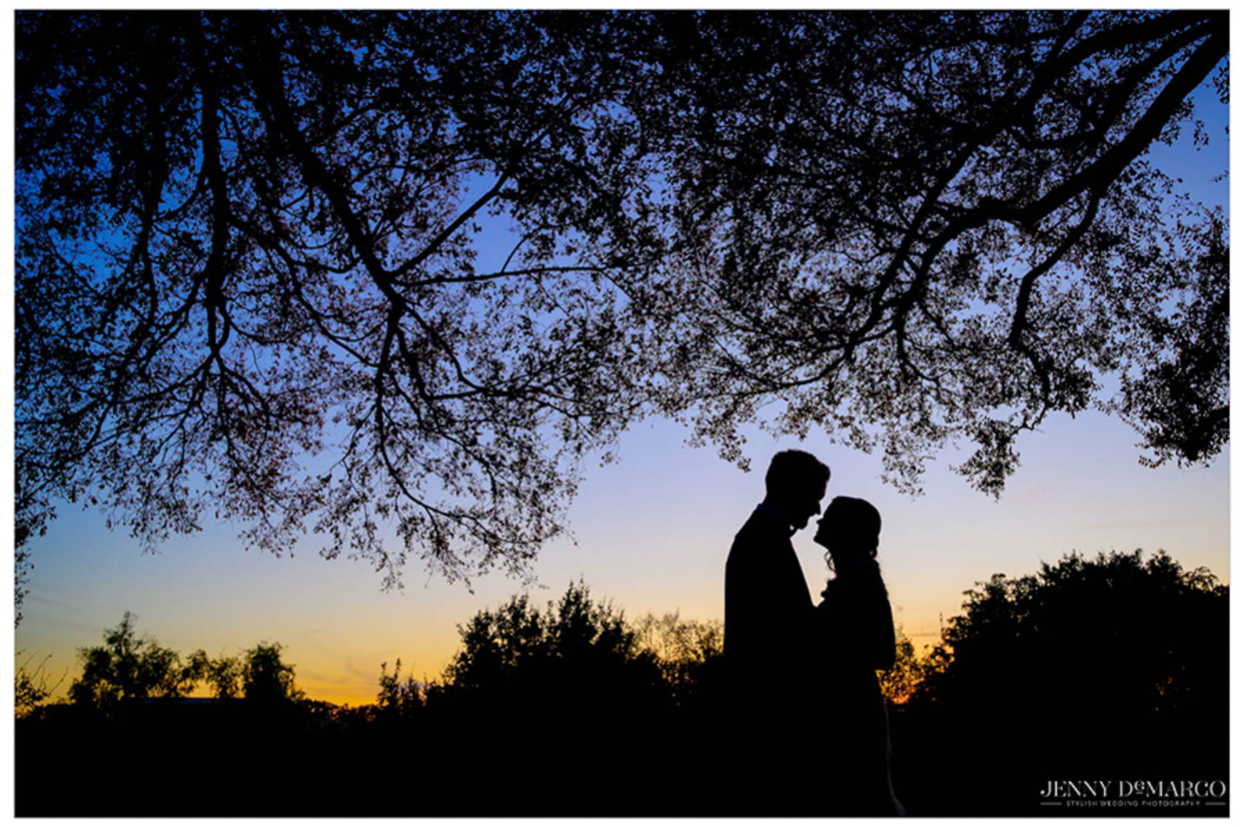 silhouettes of bride and groom under a tree